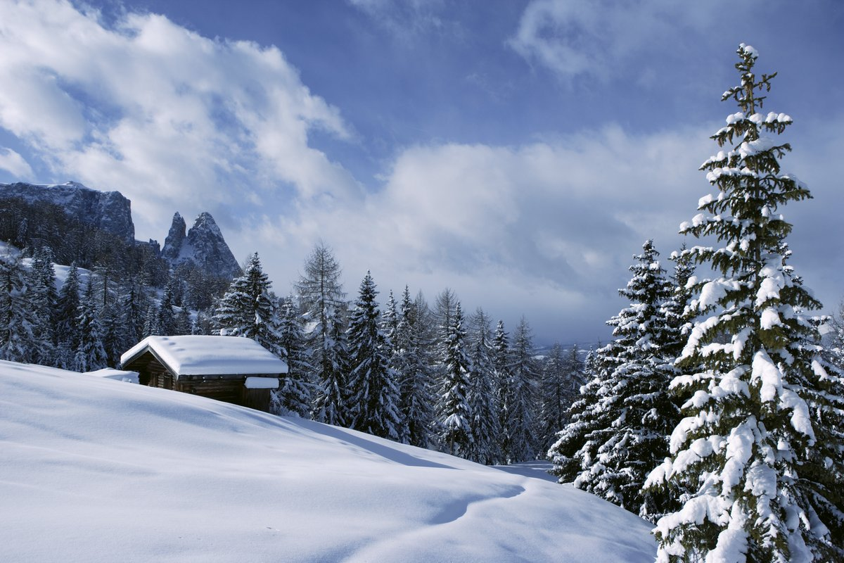http://narty.studentnews.pl/img/wo/3/66/a4044366/g/Poludniowy-Tyrol-zima-The-extensive-Alpine-p23637.jpg